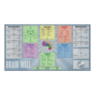 Brain Wall Poster