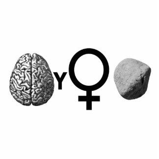 Brainy Girls Rock! Photo Sculpture
