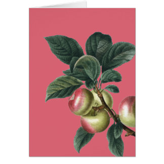 Branch of Red Apples Card