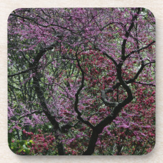Branches and Blossoms Beverage Coaster