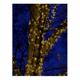Branches avec des lumières de Noël et un ciel Carte Postale
