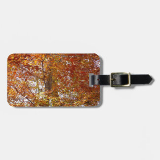 Branches of Orange Leaves Autumn Nature Luggage Tag