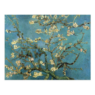 Branches with Almond Blossom by Vincent van Gogh Postcards