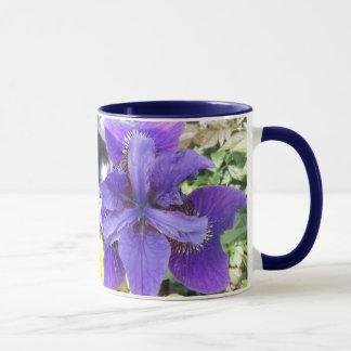 Brandeis Mug