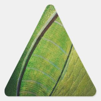 BRANDON 9_result.JPG Triangle Sticker
