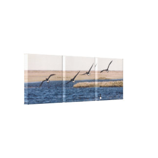 Brandt Geese Flying and Artic Loon Photo Designed Gallery Wrap Canvas