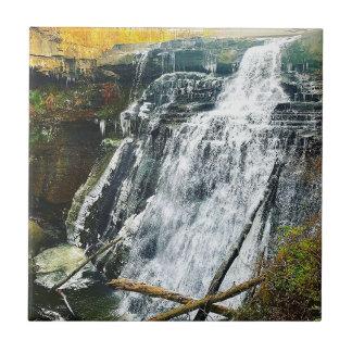 Brandywine Falls Cuyahogo National Park Ohio Tile