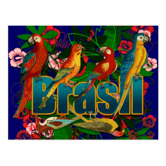 Brasil floral tropical Birds Postcard