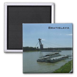 Bratislava and the Danube Square Magnet