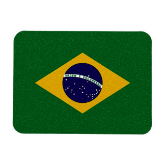 BRAZIL FLAG Flexible Magnet