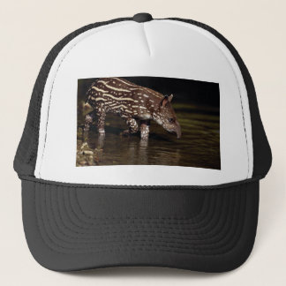 Brazilian Tapir, young calf beside river Trucker Hat