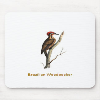 Brazilian Woodpecker bird Mousepad