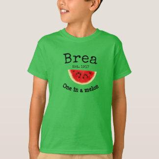 "Brea California ""one in a melon"" shirt for boys"