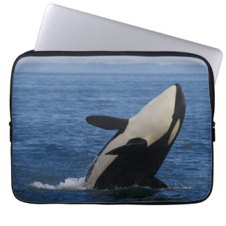 Breaching Orca Laptop Sleeve