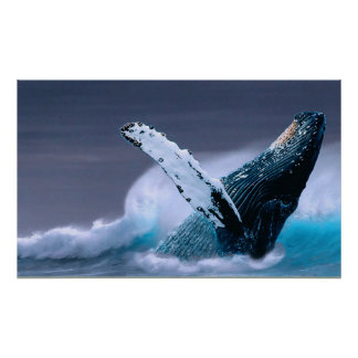 breaching whale wildlife photography poster