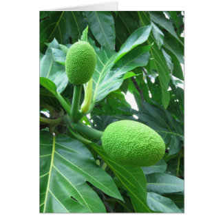 Breadfruit Card