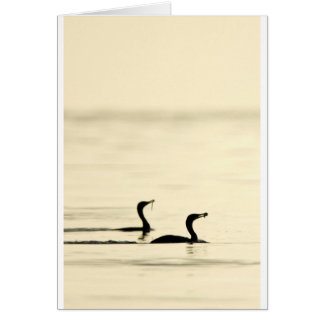 Breakfast Time for Two Cormorants Card