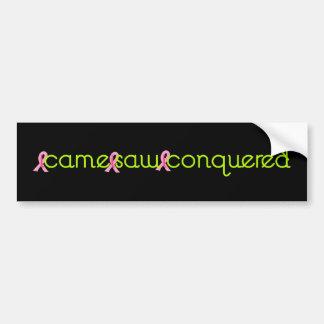 Breast cancer Survivor Sticker Bumper Sticker