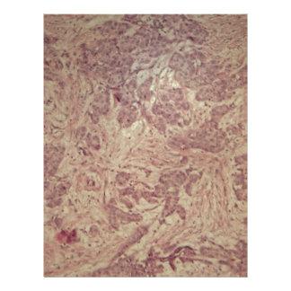 Breast cancer under the microscope letterhead