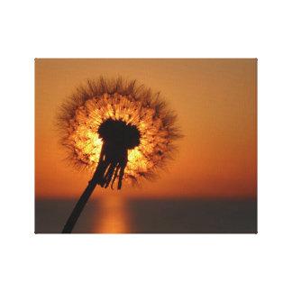 Breath flower/Dandelion Canvas Print