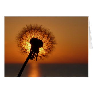 Breath flower/Dandelion Card