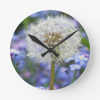 Breath flowers dream in blue forget-me-not blooms clocks