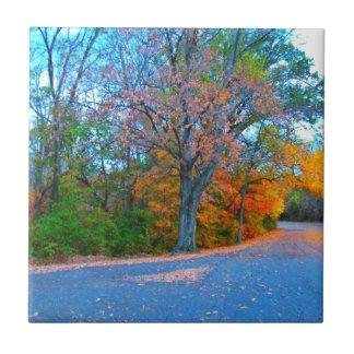 Breath-taking Autumn Day Getaway! Tile