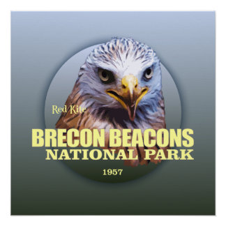 Brecon Beacons NP (Red Kite) WT Perfect Poster