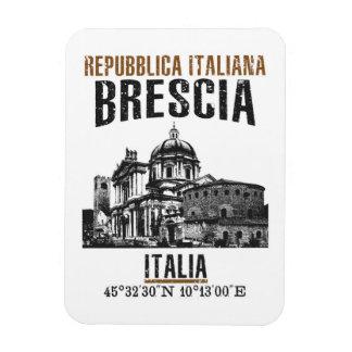 Brescia Magnet