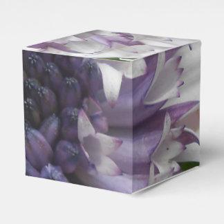 Brett Favor Box