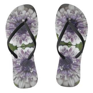 Brett Flip Flops