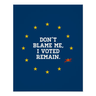 BREXIT - Don't Blame Me I voted Remain - -  Poster
