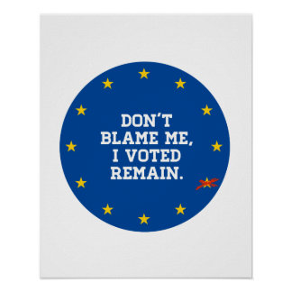 BREXIT - Don't Blame Me I voted Remain - Sticker - Poster