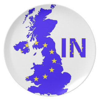"""BREXIT """"IN"""" UNION JACK PLATES"""