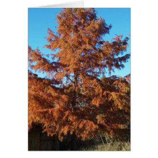 Brian's Tree, AutumnPoem Card