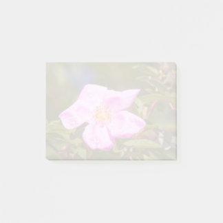 Briar Rose Post-it Notes