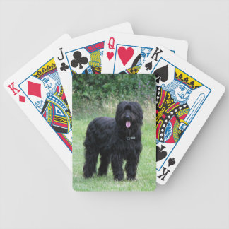 Briard dog black beautiful photo, gift bicycle playing cards