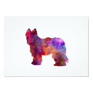 Briard in watercolor card