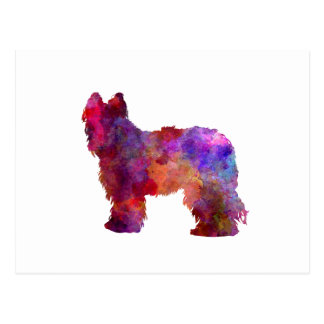 Briard in watercolor postcard