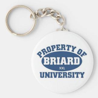 Briard  University Basic Round Button Keychain