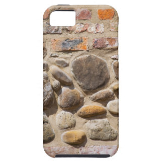 Brick and stone wall iPhone 5 case