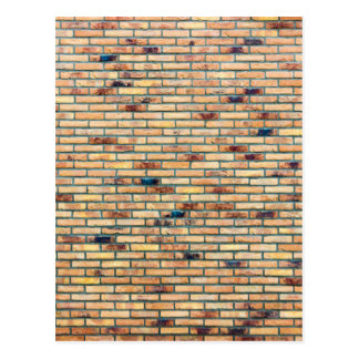 Brick wall with several colors postcard