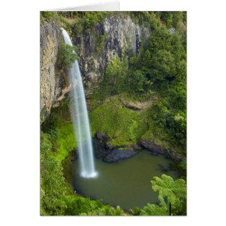 Bridal Veil Falls, New Zealand Card