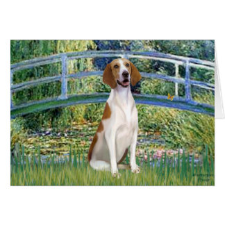 Bridge - American Foxhound Card