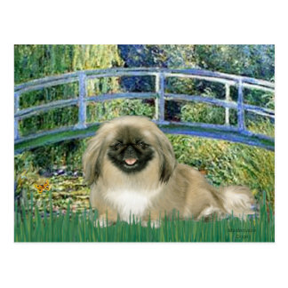 Bridge - Pekingese 1b Postcard