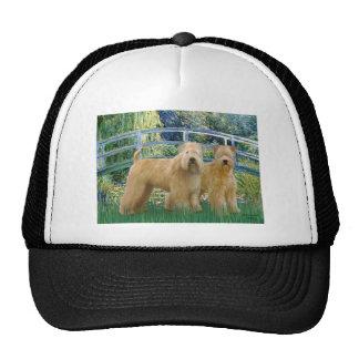 Bridge - Two Wheaten Terriers Trucker Hat