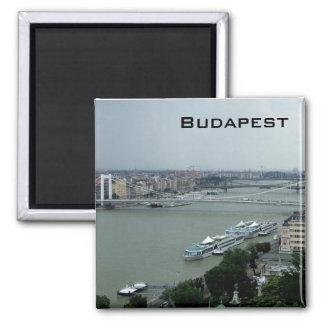 Bridges of the Danube Square Magnet