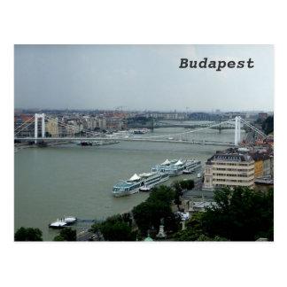 Bridges over the Danube Postcard