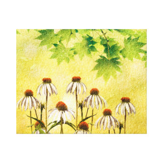 Bright and cheerful white echinacea flowers canvas print