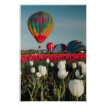 Bright Balloons & Tulips Poster